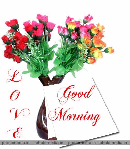 good morning have a nice day pictures
