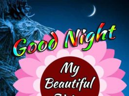 good night sister wishes